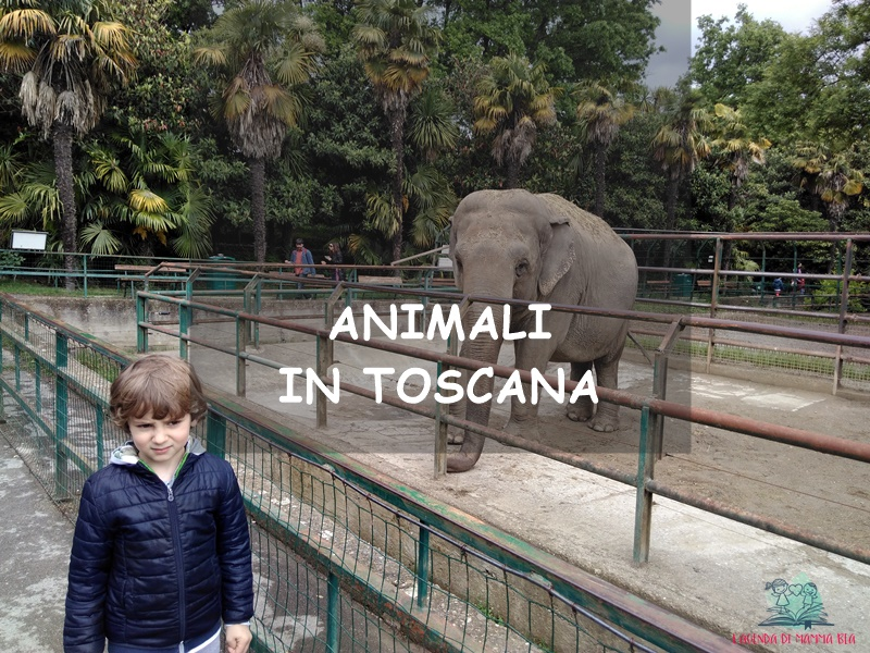itinerari in Toscana per i bambini su L'Agenda di mamma Bea